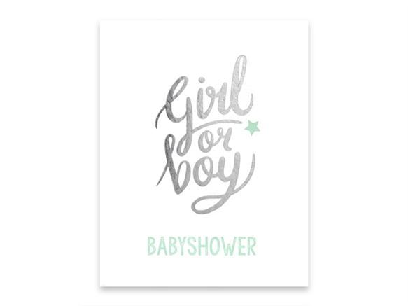 Geboortekaartje 66.9013