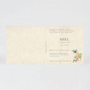 Geboortekaartje 581039 bestel je bij defamiliedrukker.nl