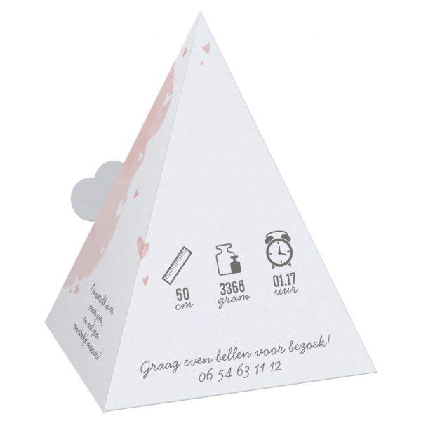 geboortekaartjes bestellen 610014